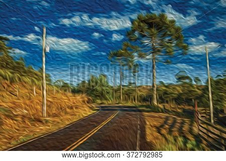 Paved Road Passing Through Rural Lowlands Called Pampas With Trees And Fence Near Cambara Do Sul. A