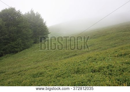 Panorama Of The Hills On The Apuan Alps Between The Green Of The Interior And The Gray Dense Fog In