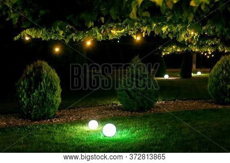 Illumination Backyard Light Garden With Electric Ground Sphere Lantern With Stone Mulch And Thuja Bu