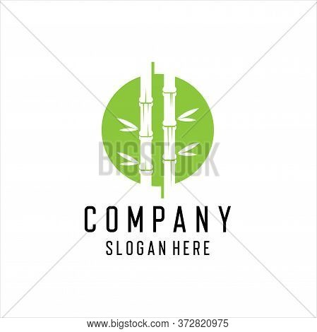 Circle Green Bamboo Logo Design Template. Green Bamboo Logo Design With Circle Vector.