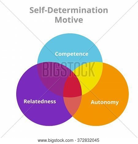 Self Determination Motive Competence Autonomy Relatedness Circle Intersection Diagram With Flat Styl