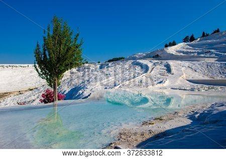 Pamukkale Turkish Mineral Calcium Pool. Included In Unesco