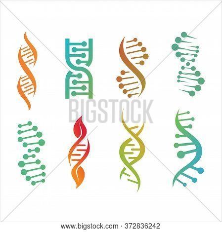 Molecule Structure, Dna Helix Set. Genetic Code Humans Animals Is Molecular Spiral Biochemical Genom
