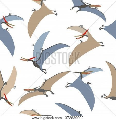Seamless Pattern Of A Prehistoric Reptile Of The Jurassic Period, Flying Grey Pterodactyl With Wings