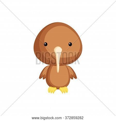 Cute Funny Baby Kiwi Bird Isolated On White Background. Adorable Animal Character For Design Of Albu