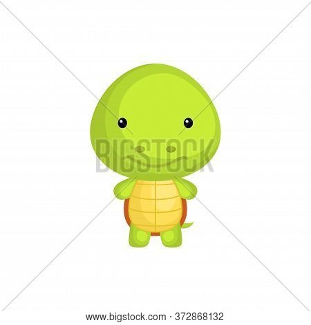 Cute Funny Baby Turtle Isolated On White Background. Adorable Animal Character For Design Of Album,