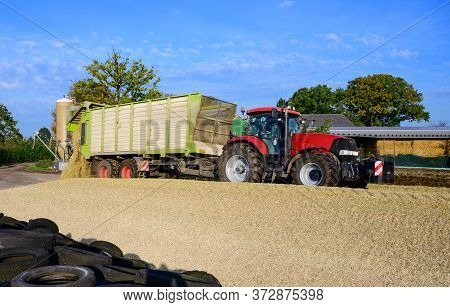 Corn Crop, Corn Silage Pile With Tractor Stuck