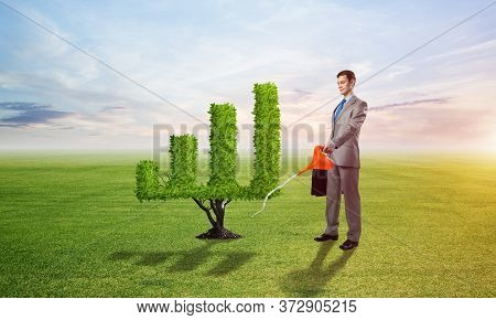 Businessman Watering Green Plant In Shape Of Financial Graph At Field. Business Analytics And Statis