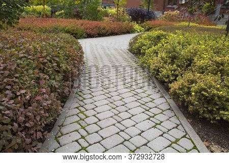 The Walkway In The City Park Is Made Of Artificial Stone Rectangular Shape Gray Color, Texture Backg
