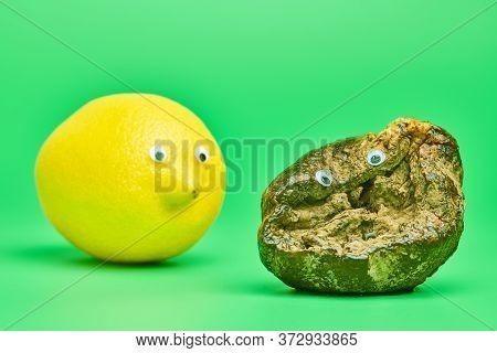 Two Lemons With Eyes. Rotten Lemon And Fresh Lemon Compare. Funny Psychological Comparison Concept,