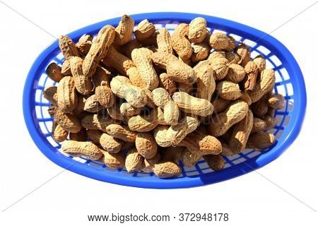 Peanuts. Salted whole in shell roasted Peanuts. Isolated on white. Peanuts in a container ready for eating.