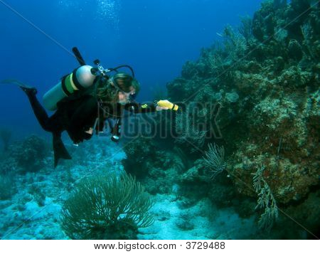 Diver Exploring The Reef With A Flashlight