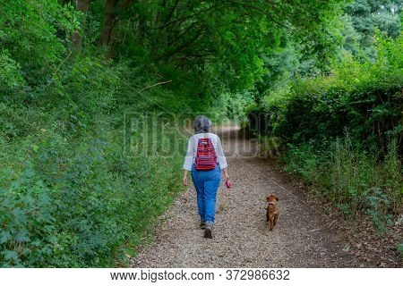 Mature Woman With A Backpack Walking Quietly With Her Dog On A Rural Path Among Trees And Vegetation