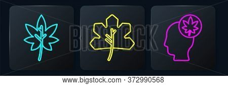 Set Line Leaf Or Leaves, Human Head With Leaf And Leaf Or Leaves. Black Square Button. Vector