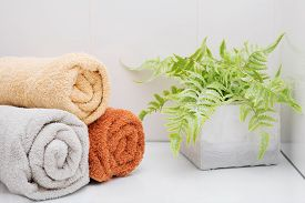 Three Rolled Towels And A Fern In A Concrete Pot On A Shelf In A White Bathroom.