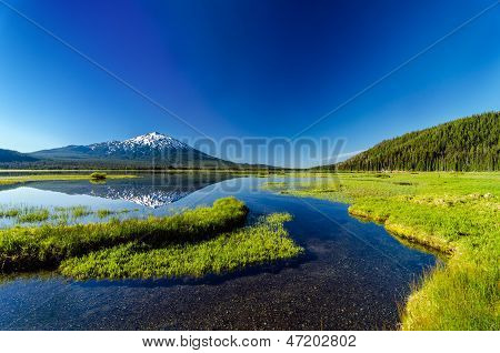 Mt. Bachelor Reflection And Forest