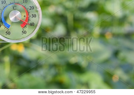Temperature meter in cucumber glasshouse showing 40 degree poster
