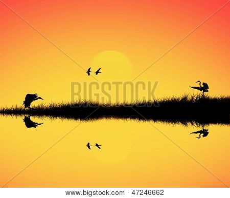 Silhouette of bird reflection in lake