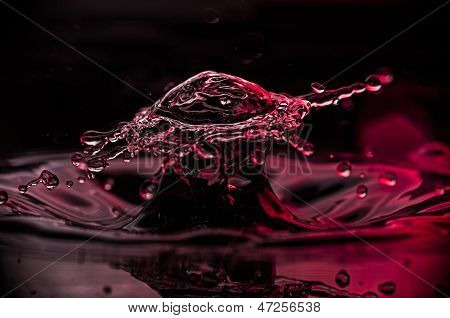 Broad Waterdrop Shown In Closeup