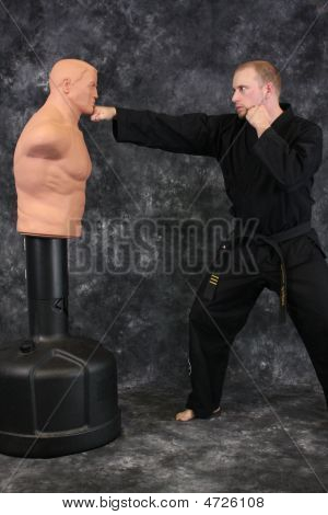 Punch The Dummy