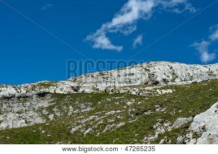 hikers in rocky terrain