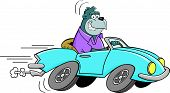 Cartoon illustration of a gorilla driving a car. poster