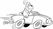 Black and white illustration of a gorilla driving a car. poster