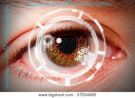Biometric Iris Scan Security Screening