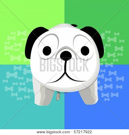 Vector illustration of surprised dog on a blue-green background poster