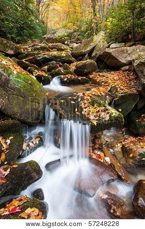 North Carolina Blue Ridge Mountain Autumn Cascade