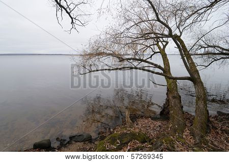 Waterscape In Russia