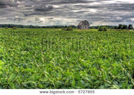 Barn In Scenic Rural Landscape In Hdr