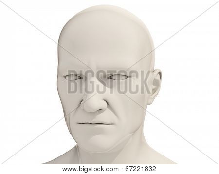 Human head isolated on a white background