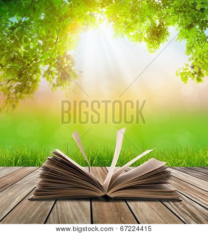 Open book on wood floor with green grass and leaf