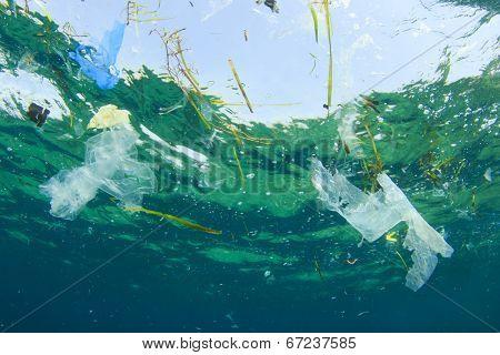 Environmental problem: Plastic bag pollution in ocean