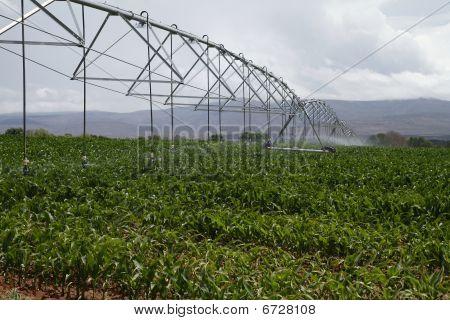 Modern Irrigation Machinery