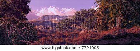 Sailboat Lake And Woods