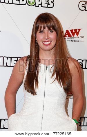 LOS ANGELES - NOV 18:  Liz Benham at the CineDopes Web Series Premiere And Launch Party at the Busby's East on November 18, 2014 in Los Angeles, CA