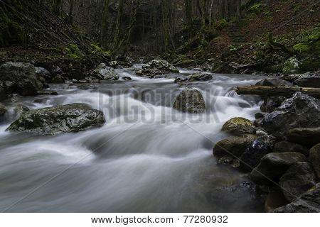 Wild River Dobra