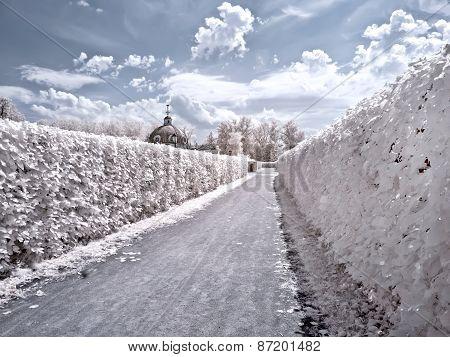 Territory Of Farmstead Kuskovo. Infrared Photo