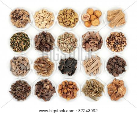 Chinese herbal medicine selection in porcelain dishes  over white background.  poster