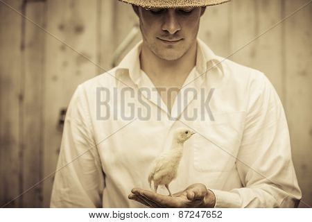 Farmer Holding A Baby Turkey
