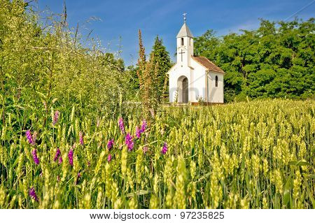 Catholic Chapel In Rural Agricultural Landscape