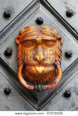 Doorknocker on wooden door