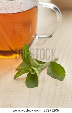 Glass with tea and fresh Stevia rebaudiana leaves as sweetener