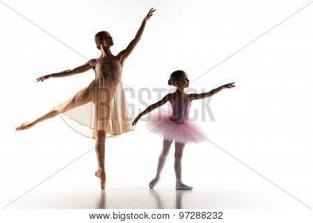The little ballerina dancing with personal ballet teacher in dance studio