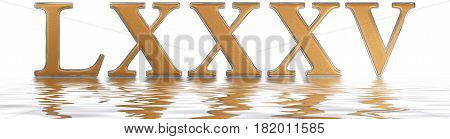 Roman Numeral Lxxxv, Quinque Et Octoginta, 85, Eighty Five, Reflected On The Water Surface, Isolated