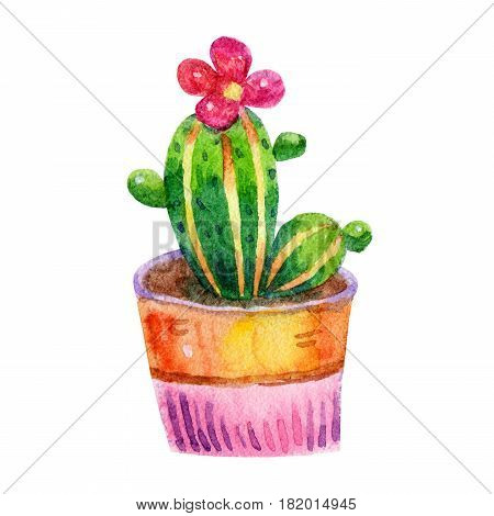 Cartoon watercolor cactus illustration isolated on white background.