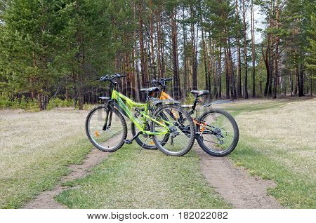 Buryatia, Russia - May,02 2014: Two bicycles on the road in the pine forest