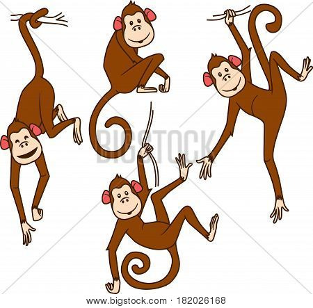 Set of monkeys in different poses on a white background